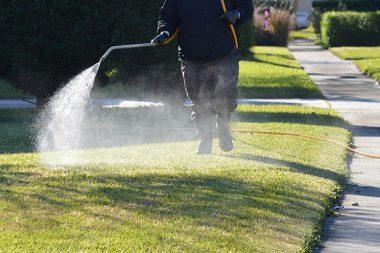 7 step lawn care program